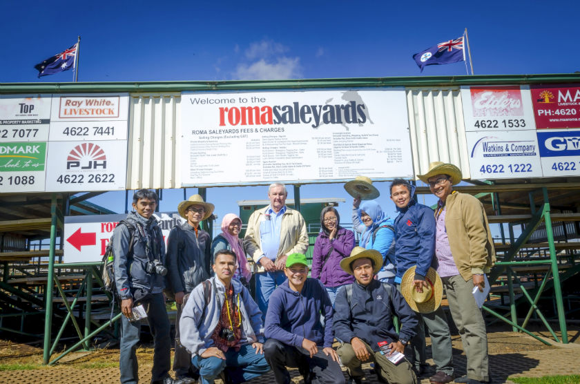 Participants of the Meat Production, Processing and Supply Chain Management Course visit Roma Saleyard1